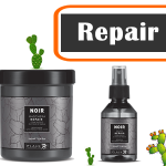 repair noir2